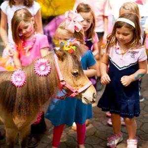 Alpharetta Childrens Party Venue Animal Interraction Raisins Ranch
